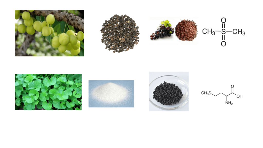 Ingredients of  Divine Locks Pill