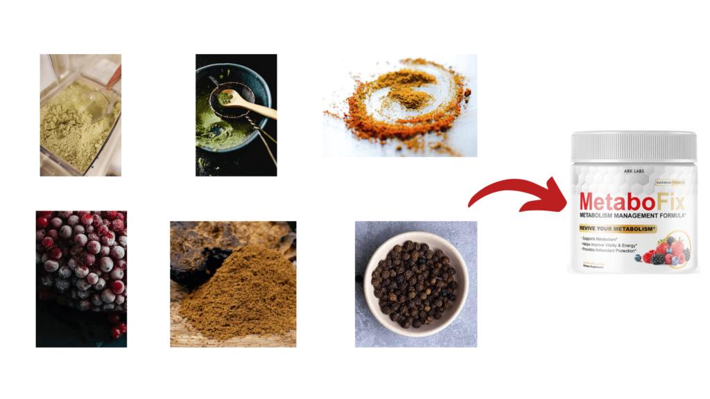 MetaboFix Ingredients