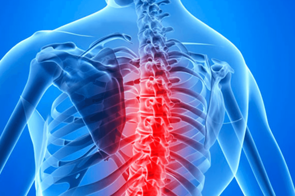 Treatment Of Spinal Cord Injuries, Integrative And Complementary Medicine Is Widely Used