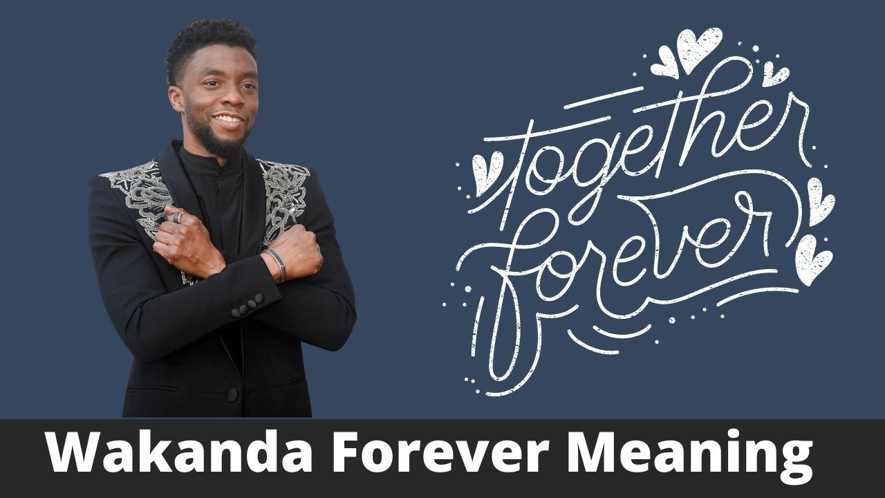 Wakanda Forever Meaning: Chadwick Boseman's Black Panther Salute explained!