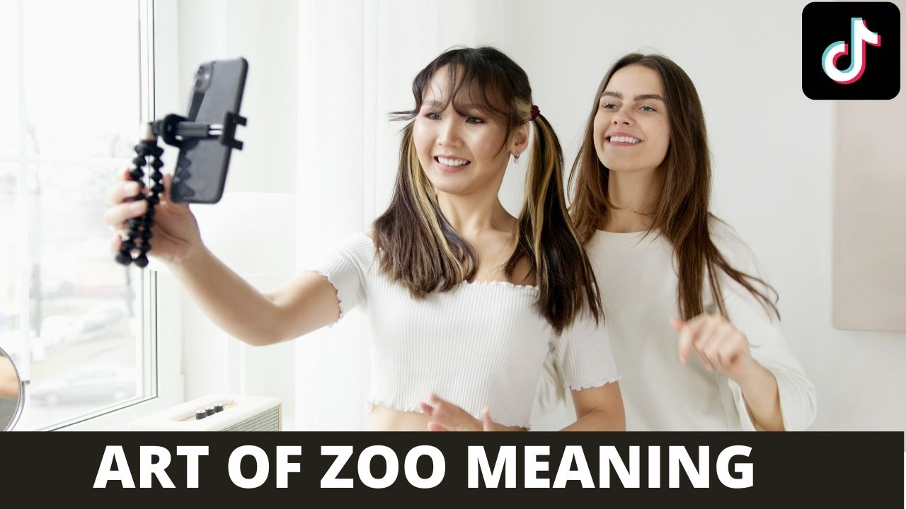 Art of the Zoo meaning Explained – Viral TikTok Trend 2021