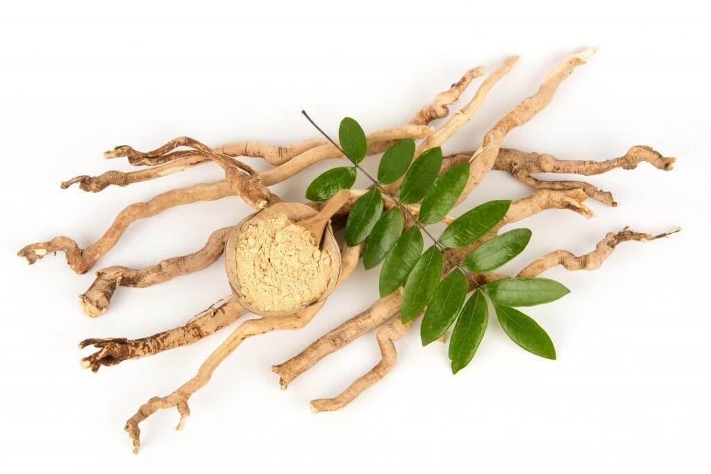 Health Flow Male Enhancement Ingredients- Eurycoma Longifolia Extract