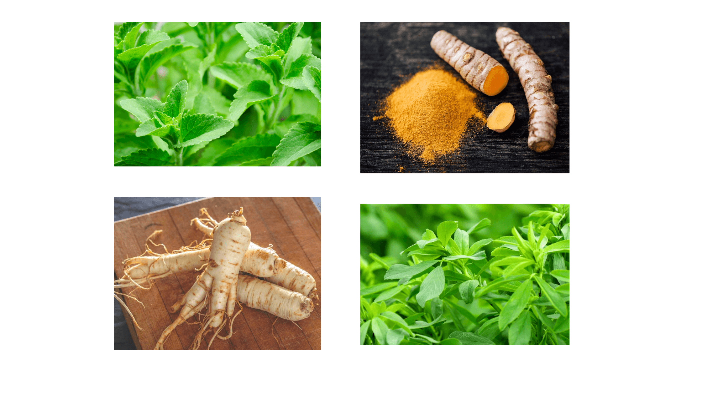 Floralite Dietary Supplement Ingredients