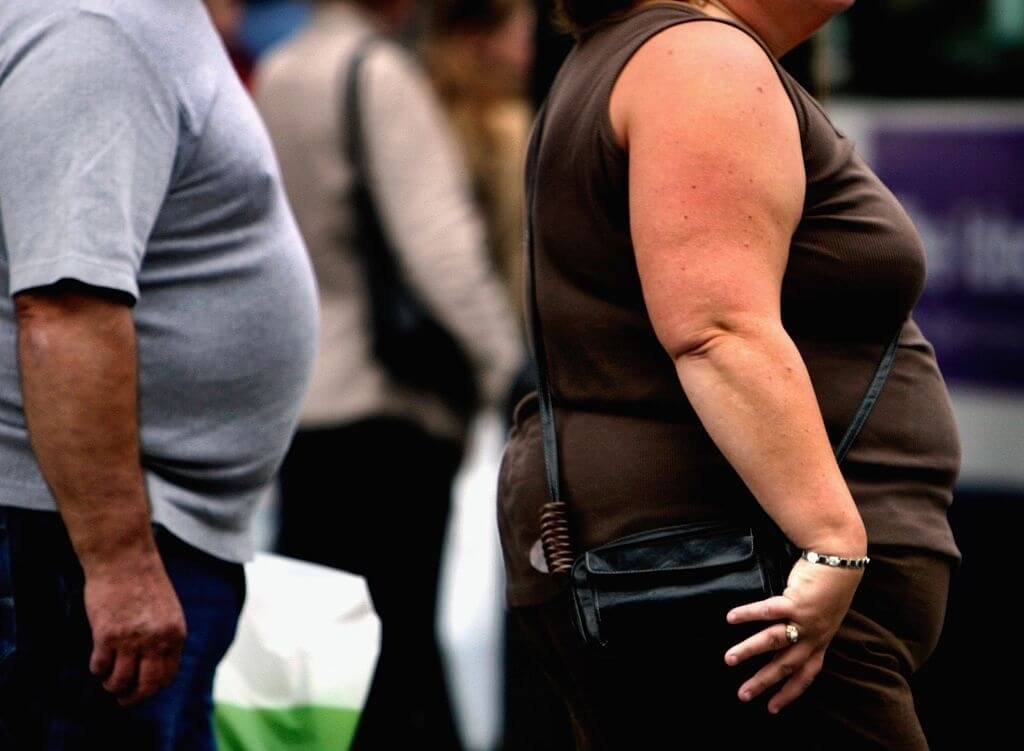 Obesity Promoting Chemicals Require More Grounded Guidelines