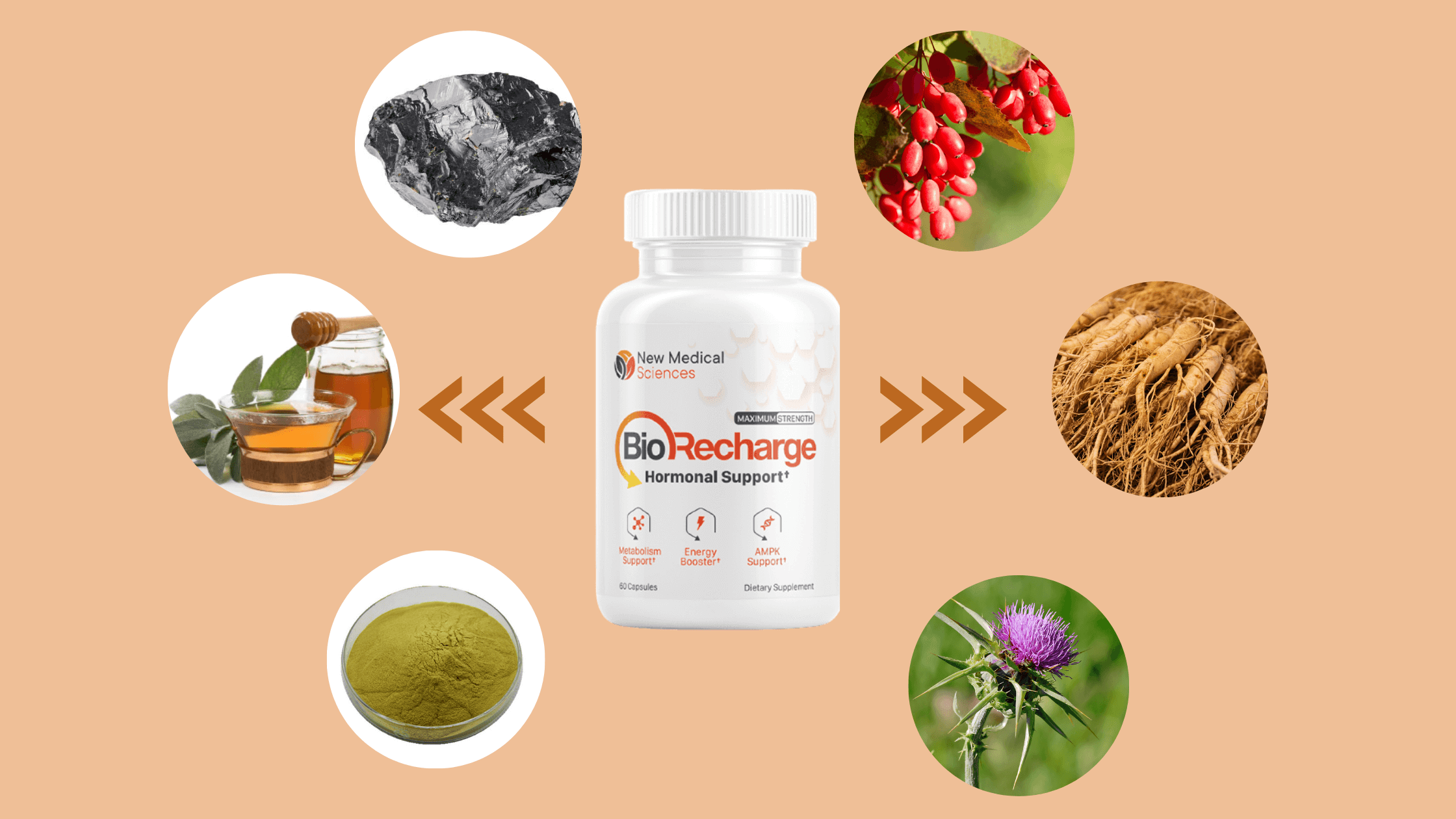 BioRecharge Ingredients