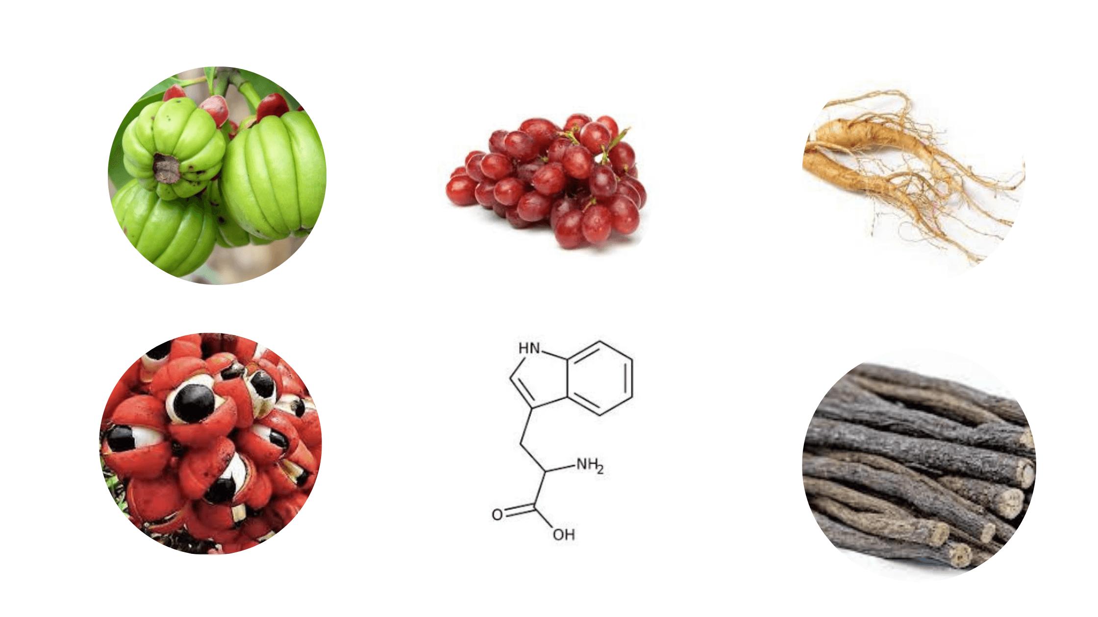 Biotox Gold Ingredients